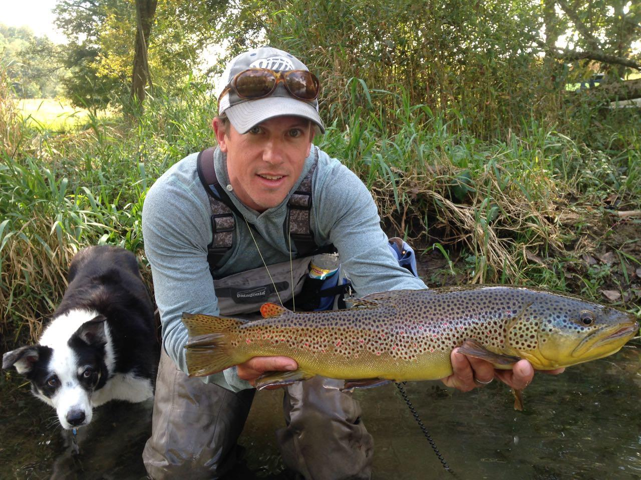South holston river brown trout riverstone fly fishing for South holston river fishing report