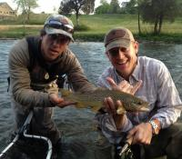 JB's Brown Trout
